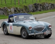 austin-healey-100-4-1956