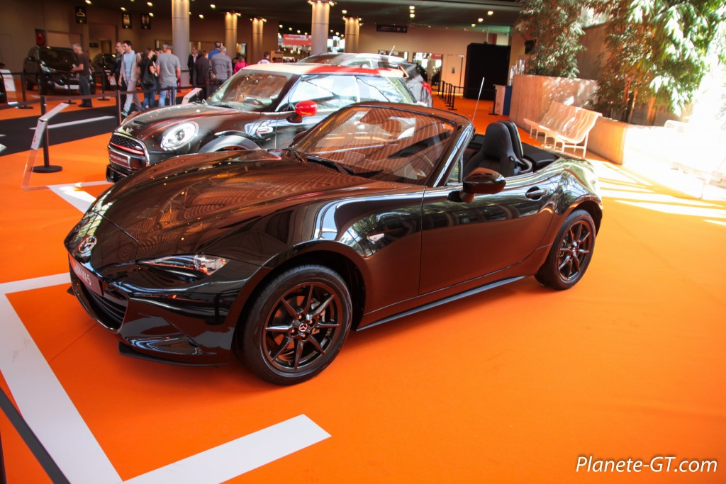 Salon-Automobile-Lyon-2015-3