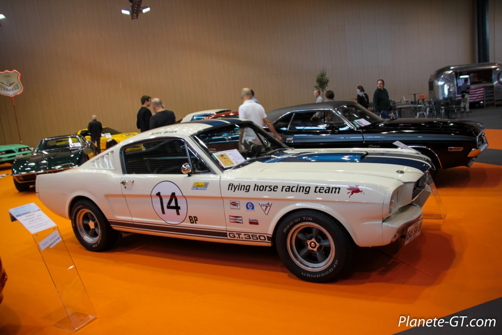 Salon-Automobile-Lyon-2015-58
